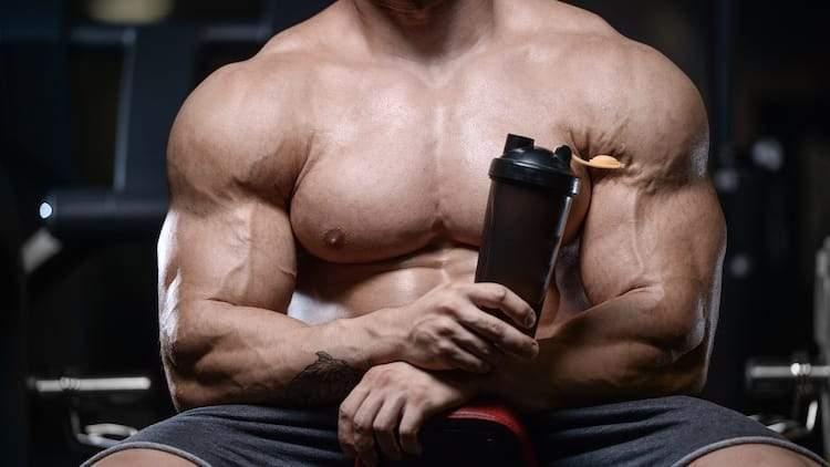 Ecdysterone For Bodybuilding